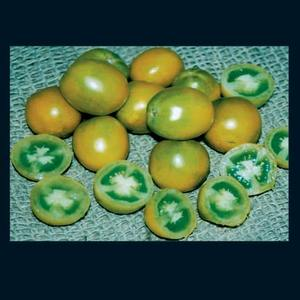 Tomato_green_grape_thumb_300x300