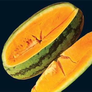 Watermelon_orangeglo_thumb_300x300