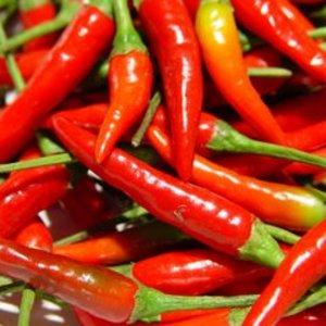 Pepper_thai_red_chili_thumb_300x300