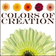 Colors-of-creation-logo-lg_thumb_80x80