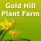 Gold-hill-icon_thumb_80x80